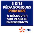 Vignette EDF